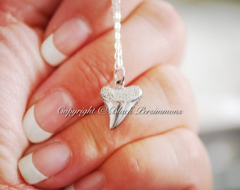 Shark Tooth Necklace - 3D Solid 925 Sterling Silver Charm -  Insurance Included
