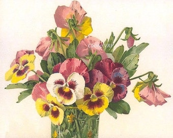 Art Print, Paul de Longpre, French Pansies on Parade, Half Yard Long, Vintage Pansies, Shabby Chic Decor
