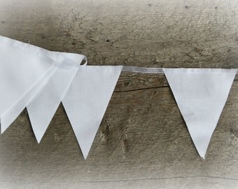 White Bunting by the Yard