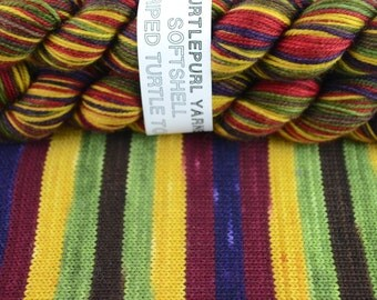 Autumn - Hand-dyed Self-striping MCN sock yarn