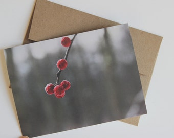 winter berry - homestead farm photography