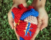 Anatomical Human Heart Plush
