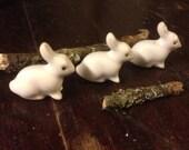 Bunny parade three rabbits looking for a garden