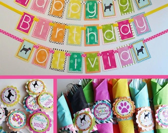 Girly Puppy Birthday Party Decorations Package Fully Assembled
