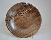 Wormy, Curly, Walnut plate no.611 Free Shipping. usa