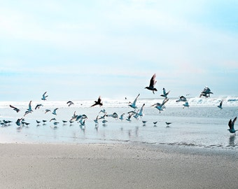 "Ocean photography,Beach home decor ""Flock of birds"" ocean,seashore,summer decor,seagulls,seascape,calming"