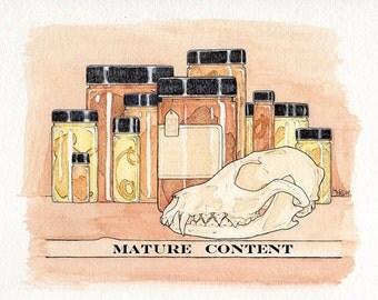 Wet Preserved Fetal Domestic Rabbit Specimen- Fetus- Jarred Specimen- Stock No. PINK