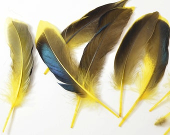 Mallard Feathers, Iridescent Green Wing - Bright Yellow (10pcs) : M06