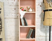 Painted Cottage Chic Shabby Pink Handmade Bookcase / Display Cabinet BC26