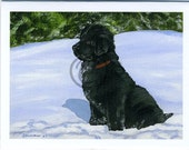 Newfoundland Dog Christmas Cards by S Nummer