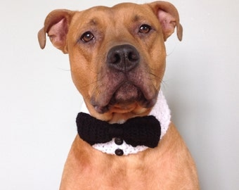 Bow Tie for Dogs, Dog Tuxedo, Black Bowtie, Formal Tux, Collar