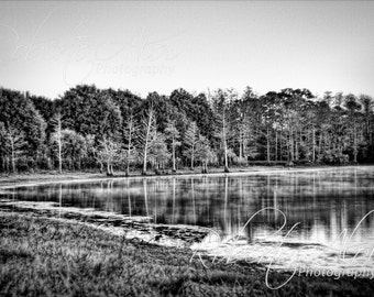 16x24 - Cow Pen Lake - Wetland - Black and White - Landscape - Fine Art Photography