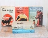 The Black Stallion Vintage Walter Farley Books, The Island Stallion, Black Stallion Filly, Book Collection, Classic Books, 1940s Books