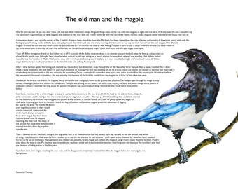 The Old Man and the Magpie