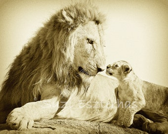50% OFF SALE, Baby Lion and Dad, Sepia Photo, Baby Animal Photography, Wildlife Photography,  Nursery Art, African Safari, Fathers Day