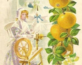 Quaker Woman Spins at her Spinning Wheel Embossed Vintage Thanksgiving Postcard 1913 Bright and Festive