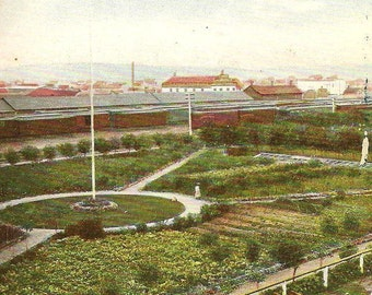 CPR Gardens CALGARY Alberta Unused Vintage Postcard Bird's Eye View