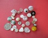 25 Vintage Antique Buttons Diminutive Small Unique Owl Shell