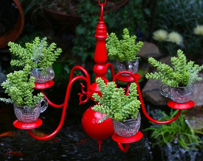 Ucculent Planter, Recycled Chandelier Lighting, Hanging Basket, Candelabra, English Ivy Pot, Kitchen Garden, Recycled Yard Art, Patio Light