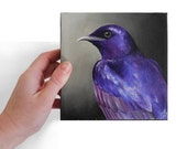 Purple Martin painting, violet songbird canvas art portrait, purple bird wildlife realism 6x6 original artwork