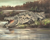 Crocodile wildlife reptile 20x24 oils on canvas by RUSTY RUST / C-90