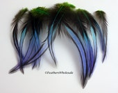 Peacock Blue Green Purple Craft Feathers Home Decor Feather Ornament Decorative Feathers Blue Green Feathers Blue Craft Feathers