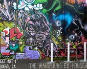 8x10/8x12 Photograph - 'Street Art 1' - San Diego, California