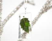 Real Holy Leaf resin pendant - clear rectangle resin, white gold plated silver necklace, under 30