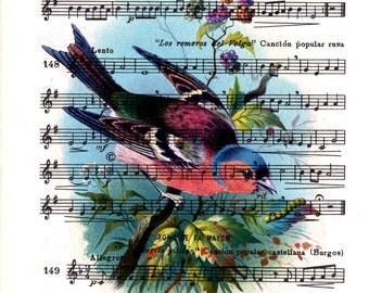 Summer Sale Cute vintage bird over original music sheet, Shabby chic wall decor, Bird wall art, Bird song print ANI243