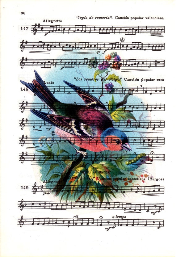 Spring Sale Cute vintage bird over original music sheet, Shabby chic wall decor, Bird wall art, Bird song print MP15