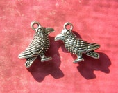 RAVEN Charms or Pierced Earrings  You Choose Pagan Wise Bird Norse Gods Odin Loose Charm