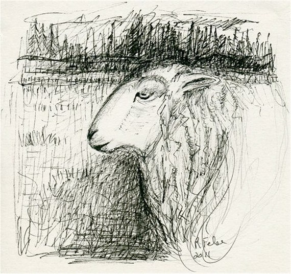 Where Sheep go to Dream/Sheep Drawing/Pen and Ink Sheep Drawing Original Art