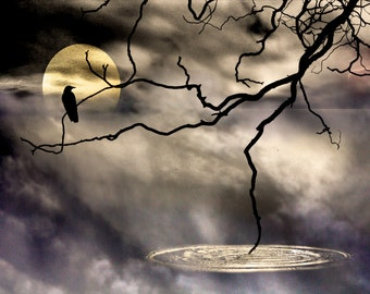 Ravens Perch, PHOTOGRAPHY on CANVAS, Black Crow Dark Wall Art Giclee Print on stretched canvas signed and ready to hang