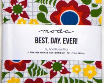 SALE - Best Day Ever Charm Pack by Prairie Grass Patterns from Moda - 42 Five Inch Squares