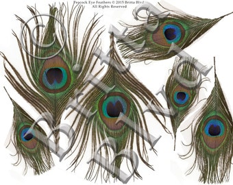 Edible Peacock Eye Feathers - Pre-Printed Wafer Paper Sheet