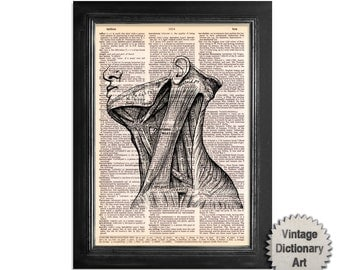 Neck Muscles Anatomy Print - Printed on Vintage Dictionary Paper - 8x10.5 Anatomy Art