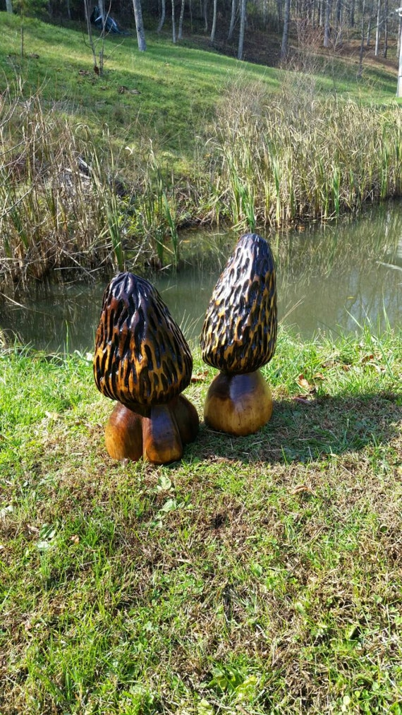 Chainsaw carving carved morel mushroom set