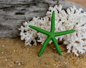 Beach Decor Green Starfish Painted Starfish - Beach Wedding Decor, Painted Starfish, Starfish Nautical Decor, Natural Starfish, Starfish