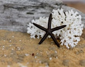Beach Decor Black Starfish Painted Starfish - Beach Wedding Decor, Painted Starfish, Starfish Nautical Decor, Natural Starfish, Starfish
