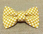 Colonel Mustard Baby Boy Bow Tie