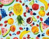 NEW - Robert Kaufman - Metro Market - Juicy Fruits - Aqua - Novelty Fabric-Choose Your Cut 1/2 or Full Yard