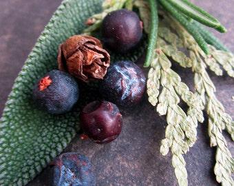 Organic Bath Tea - Forest, High Mountain - Juniper Cedar & Sage Bath Tea