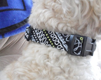Modern Black Dog Collar - black and white, swirls, adjustable