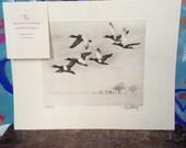 Antique duck lithograph