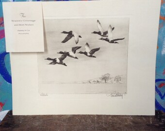 Antique duck lithograph