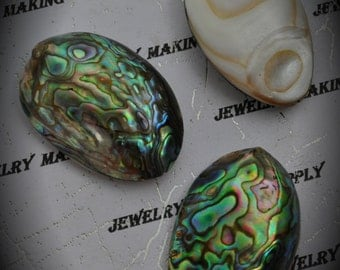 SALE Large Genuine Abalone Mother Of Pearl Bead