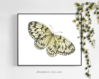 LIGHT BUTTERFLY - digital image download - printable antique illustration for prints, nursery art, towels, totes, pillows - lovely wall art