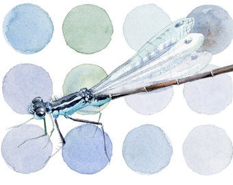 Dragonfly print, Modern light blue-turquoise GICLEE PRINT of original watercolors