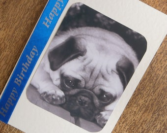 Pug dog Birthday card