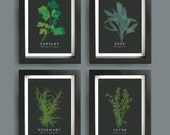 Kitchen Wall Art, Herbs print, Parsley, Sage, Rosemary & Thyme, Mid Century Modern prints, SET OF 4, Minimalist Poster, Herbs Gift for Cooks